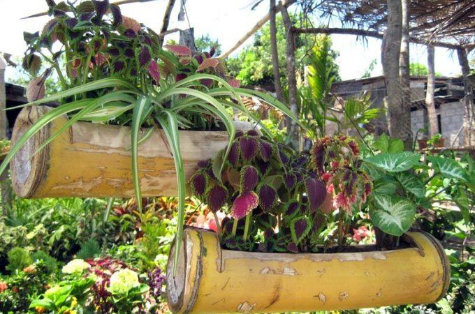 Special Garden Planters