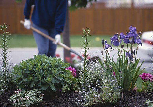 Using Garden Art