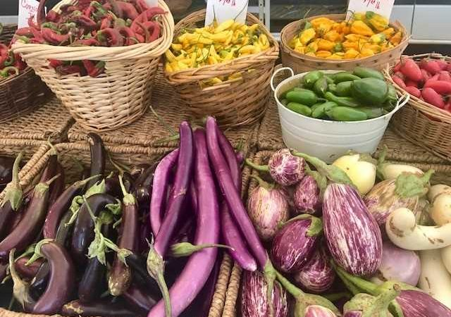 Why A Plant-Based Diet Matters